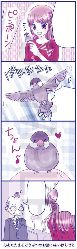 心あたたまるどうぶつのお話03