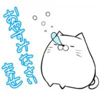 ましろねこ【敬語】(もちもち白い猫)